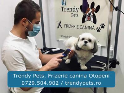 Trendy pets. frizerie canina otopeni