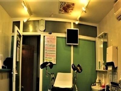 Servicii medicale, ginecologie, laborator, ecograf