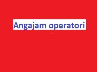Angajam fete și băieți pentru postul de operatori
