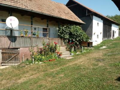 Casa traditionala la 30 km de cluj
