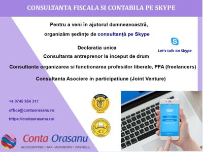 Sedinte de consultanta fiscala online pe skype