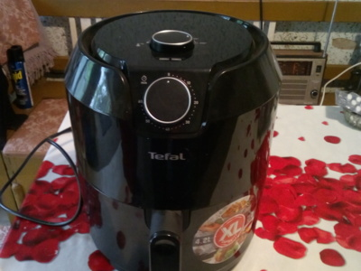 Fripteuza air fryer