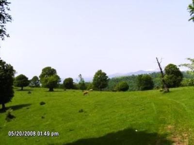 VÂnd teren un deal 91667 mp intravilan