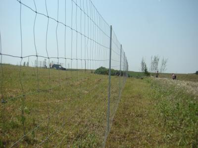 Plasa innodata - imprejmuiri zootehnice,agricole