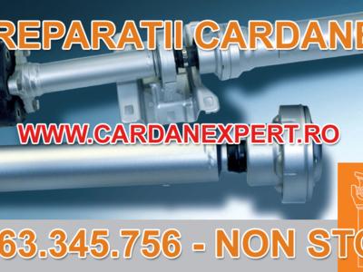 Reparatie cardan scania 6x4, 8x4, 124