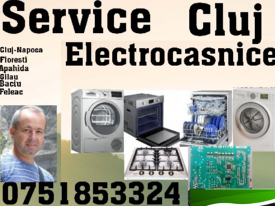 Reparatii cuptoare electrice cluj