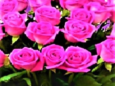 Livrare flori la domiciliu gratuită în 60 orase