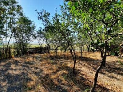 Casa de vanzare + teren in comuna ulmeni calarasi