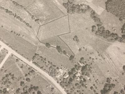 Vând teren intravilan/extravilan copalnic mm