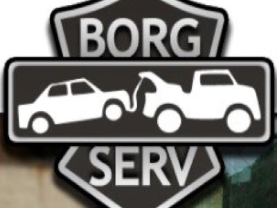 Borg Serv Srl.
