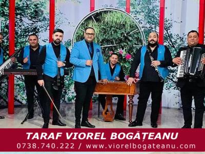 Viorel  Bogateanu