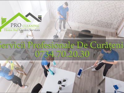 Pro Cleaning Pro Cleaning