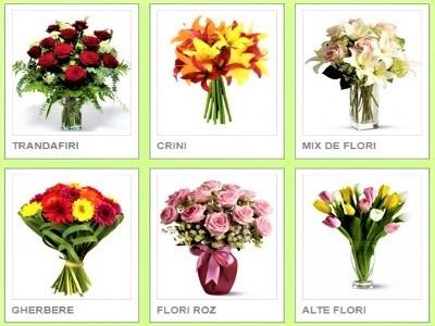 Trimite Flori In Romania