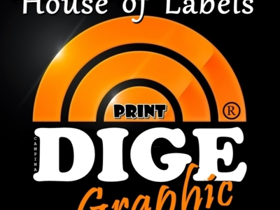 DIGE Graphic